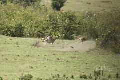 Mara Plains 200_400  1505
