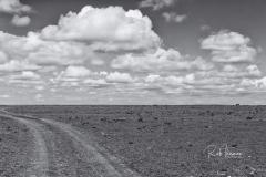 Mara Plains 70_200 1121-Edit-2
