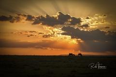 Mara Plains 70_200 2087-Edit