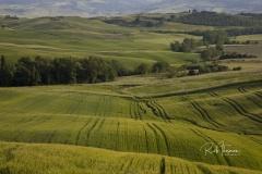Italy 20090512_00080